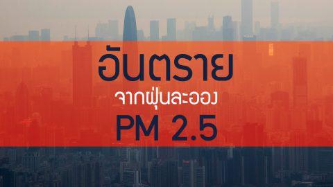 ในวันที่ฝุ่นละออง PM 2.5 คลุมเมือง